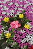 fleurs de flottement Images stock