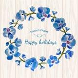 Fleurs de fond de cadre d'orchidée bleue bonnes fêtes Photos stock