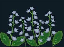 Fleurs de forêt Photos stock