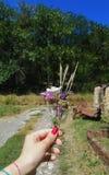 Fleurs de forêt Images stock