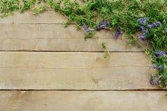 Fleurs de forêt sur un fond en bois Image libre de droits