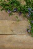 Fleurs de forêt sur un fond en bois Photo libre de droits