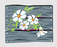 Fleurs de frontière de sécurité Image stock