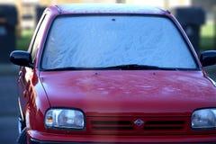 Fleurs de Frost Photo stock