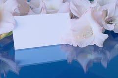Fleurs de glaïeul et carte blanche avec l'espace libre pour le texte Fond de fleur dans des tons en pastel Image libre de droits