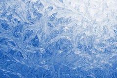 Fleurs de glace Image stock