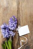Fleurs de jacinthe sur le fond en bois Images stock