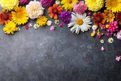 Fleurs de jardin au-dessus du fond en pierre de table Images stock