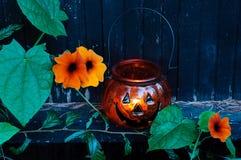 Fleurs de jardin de Halloween Photographie stock