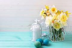 Fleurs de jonquilles de ressort et oeufs de pâques jaunes sur l'OE de turquoise Images stock