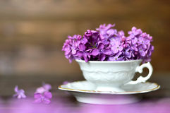 Fleurs de jour de mères dans la tasse de vintage Image libre de droits