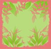 Fleurs de jungle Images stock
