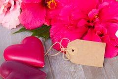 Fleurs de ketmie avec deux coeurs roses Image libre de droits