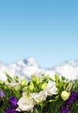 Fleurs de Lisianthus en montagnes images libres de droits