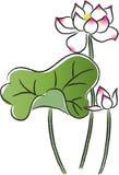 Fleurs de lotes de Vectir Photo libre de droits