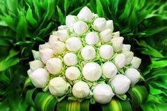 Fleurs de lotus blanc dans le bouquet Photographie stock