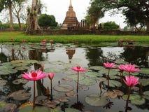 Fleurs de Lotus et ruines de temple bouddhiste image stock