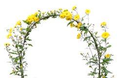 Fleurs de maman Photographie stock libre de droits