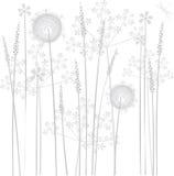 Fleurs de marais Photographie stock