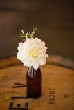 Fleurs de mariage dans des bouteilles Image stock