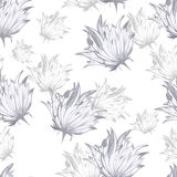 Fleurs de modèle de texture Photographie stock libre de droits