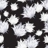 Fleurs de modèle de texture Photo libre de droits