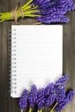 Fleurs de Muscari et carnet vide Images stock