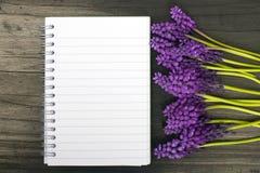 Fleurs de Muscari et carnet vide Image libre de droits