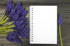 Fleurs de Muscari et carnet vide Photographie stock libre de droits