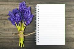 Fleurs de Muscari et carnet vide sur une table en bois foncée Photo stock
