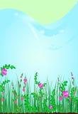Fleurs de nature d'herbe Photo libre de droits