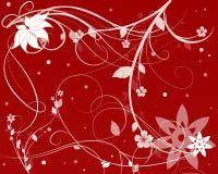 Fleurs de Noël Images libres de droits