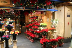 Fleurs de Noël, lumières et décorations, Montréal images stock