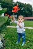 Fleurs de observation de maman et de fils Photographie stock