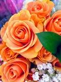 Fleurs de p?che photographie stock