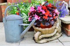 Fleurs de patio Photographie stock
