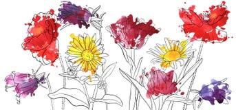 Fleurs de pavot de dessin de vecteur illustration libre de droits