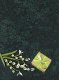 Fleurs de perce-neige, branches de saule et giftbox sur Verde Guatemala Photo stock