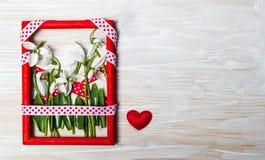 Fleurs de perce-neige dans un cadre rouge de photo Photo stock