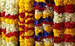 Fleurs de peu d'Inde Image libre de droits