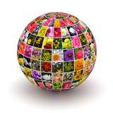 Fleurs de planète photo stock