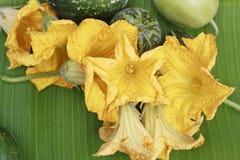 Fleurs de potiron Images libres de droits