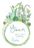 Fleurs de pré et cadre vert illustration stock