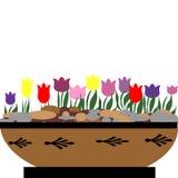 Fleurs de printemps Images libres de droits