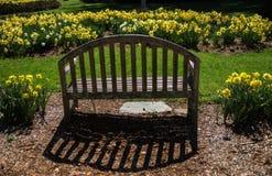 Fleurs de printemps avec le banc Photographie stock libre de droits