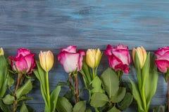Fleurs de rangée sur un fond bleu photographie stock libre de droits