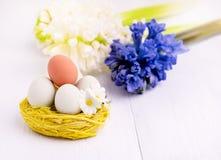Fleurs de ressort avec des oeufs de pâques à l'arrière-plan de ressort de Pâques de nid avec le concept de Hyacinth White Copy Sp Image libre de droits
