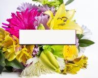 Fleurs de ressort avec l'espace de copie Photographie stock libre de droits