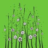 Fleurs de ressort avec le fond vert Images stock