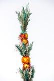 Fleurs de ressort d'isolement sur le fond blanc Photographie stock